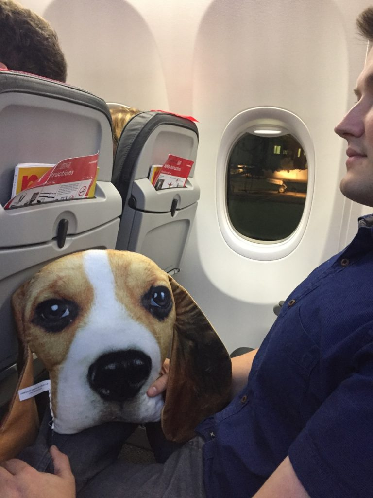 Adam with beagle pillow on airplane